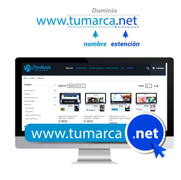 DOMINIO-NET-WEB_HOCHIMIN