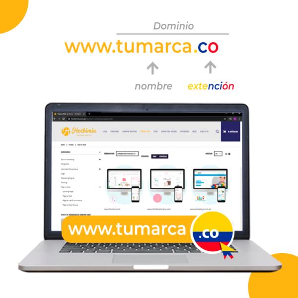 Hochimin Dominio Colombia .co