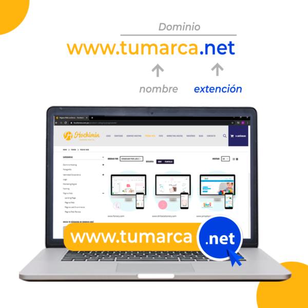 Hochimin Dominio Net .net