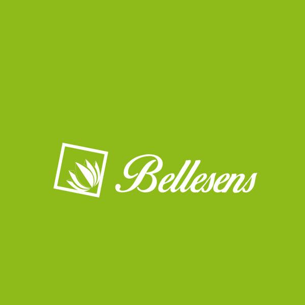 LOGOS-WEB_HOCHIMIN- BELLENSES (2)