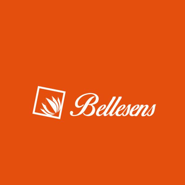 LOGOS-WEB_HOCHIMIN- BELLENSES (3)