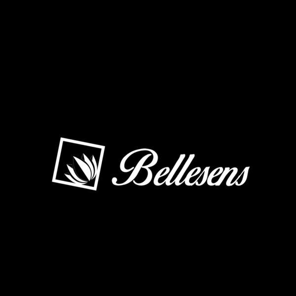 LOGOS-WEB_HOCHIMIN- BELLENSES (4)