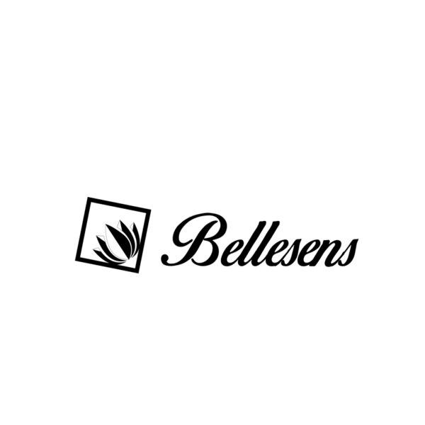 LOGOS-WEB_HOCHIMIN- BELLENSES (5)