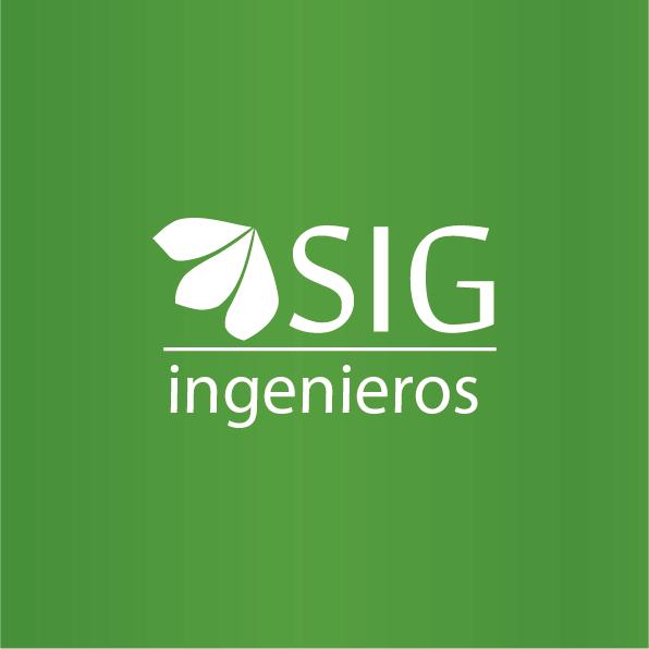 Hochimin-LogoManual_sigingenieros-02