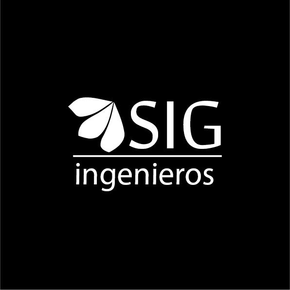 Hochimin-LogoManual_sigingenieros-05