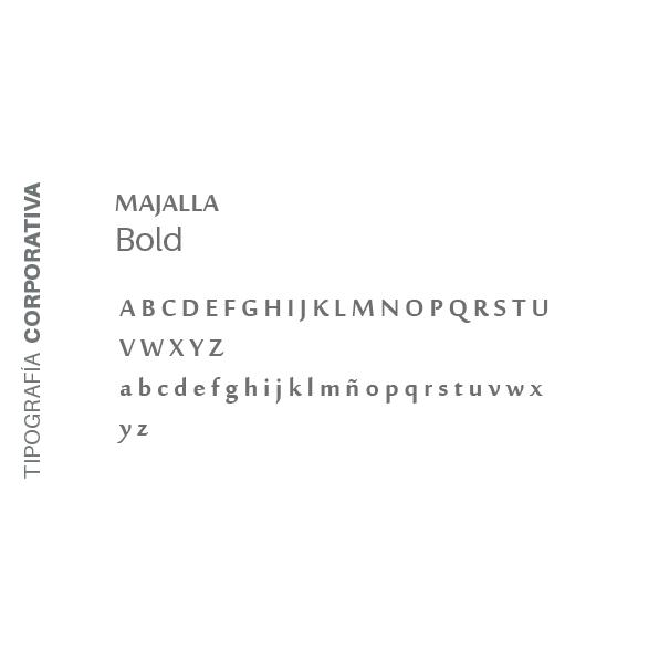 Hochimin-LogoManual_sigingenieros-07